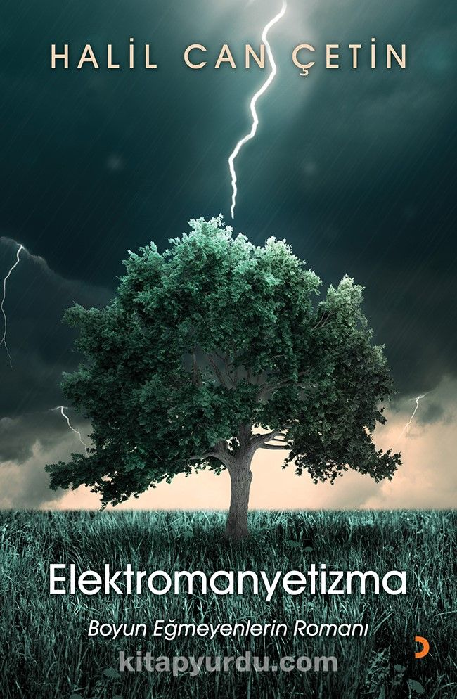 Elektromanyetizma - Halil Can Çetin pdf epub