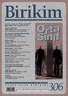 Birikim / Sayı:306 Yıl:2014 / Aylık Sosyalist Kültür Dergisi