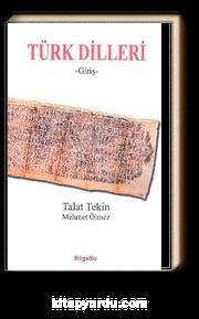 Türk Dilleri (Giriş)