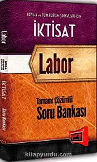 KPSS A İktisat Labor Tamamı Çözümlü Soru Bankası